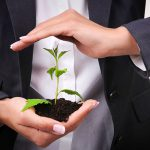 Protecting your plants is critical during the import process.
